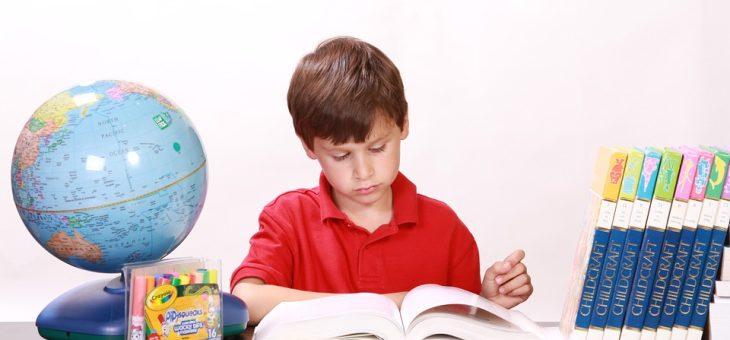 Motivarea către studiu a copiilor, F. Colceag